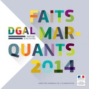 a130507f59fe70 La DGAL publie son rapport d activité 2014   Actalia
