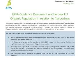 EFFA guidance document